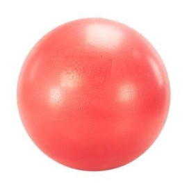 EcoWise Fitness Ball - 65 cm - Cherry